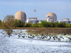 The South Texas Project nuclear plant