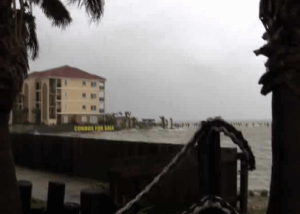 Video Covering Hurricane Alex with no crazy media stunts John Tedesco